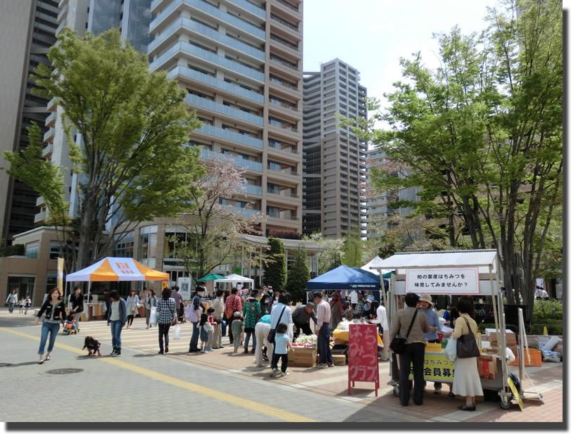 center-kashiwanoha